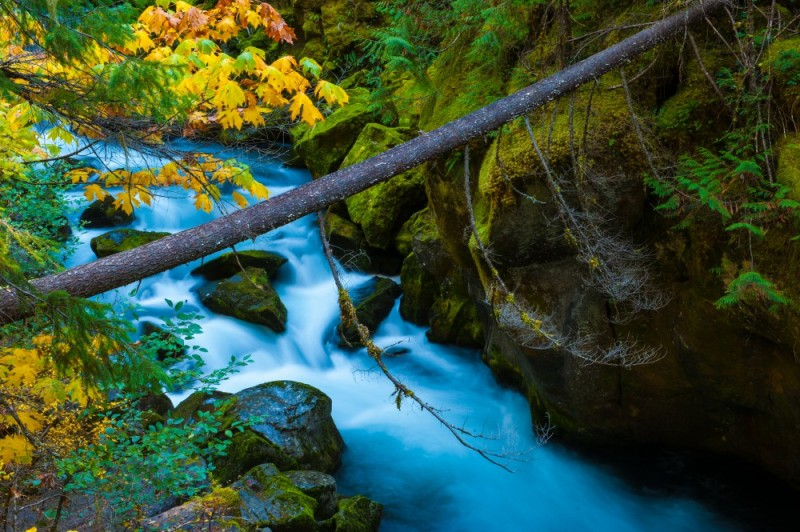 North Umpqua River - Umpqua National Forest (Oregon)