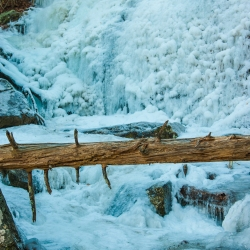 Log Over (Now Frozen) Cascade