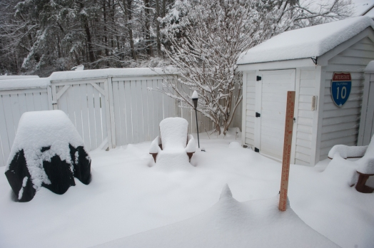 "Over 8"" in the backyard"