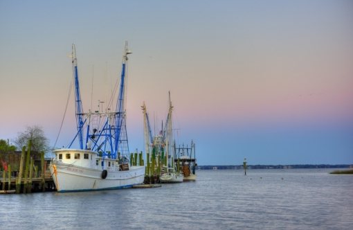 "Shrimp boats along Shem Creek. My firend recently commened, ""I love how Shem Creek still has an active fishing industry...I recently attended a wedding there where the vows were interrupted by someone using a grinder to repair their fishing boat."""
