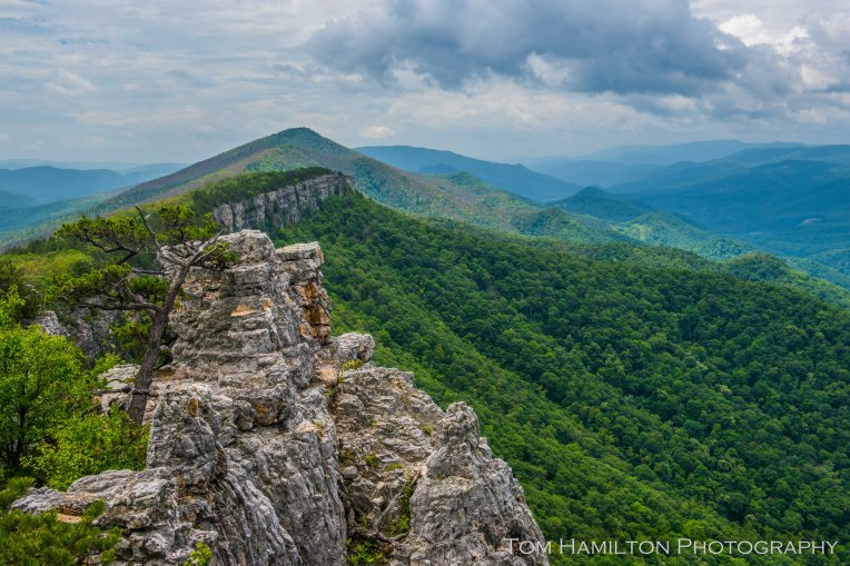 The rugged spine of cliffs runs the length of North Fork Mountain