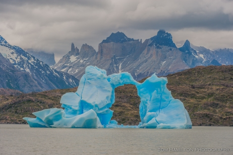 Iceberg on Lago Grey in Torres del Paine National Park