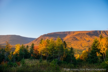 Tablelands and fall foliage