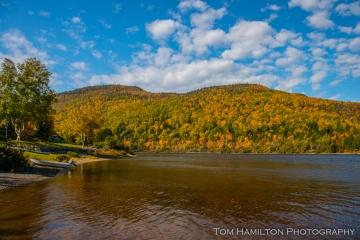 Humber River in full autumn glory