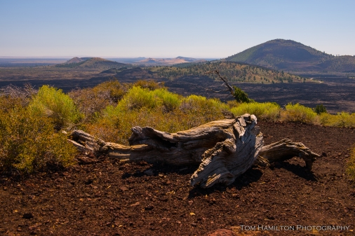 View from atop a volcanic cinder cone in Craters of the Moon National Monument