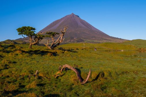The plateau beneath Pico Mountain looks like the savannas of Africa. Technically it is on the African tectonic plate.