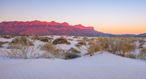Pure white Gypsum sand dunes in Guadalupe Mountains National Park