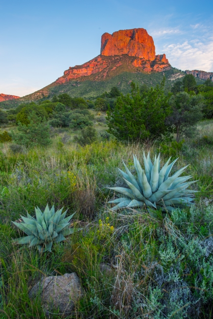 Alpenglow on Casa Grande in the Chisos Mountains. Beautiful scenery is pervasive in Big Bend.