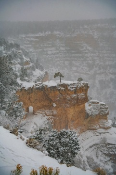 Bright Angel Trail. While very white, not so bright [on this day].